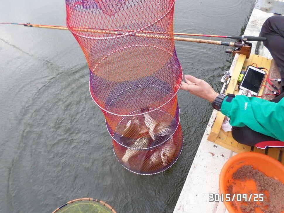 fish_pay_06144912.jpg
