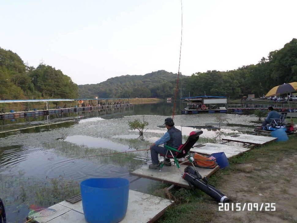 fish_pay_06152539.jpg
