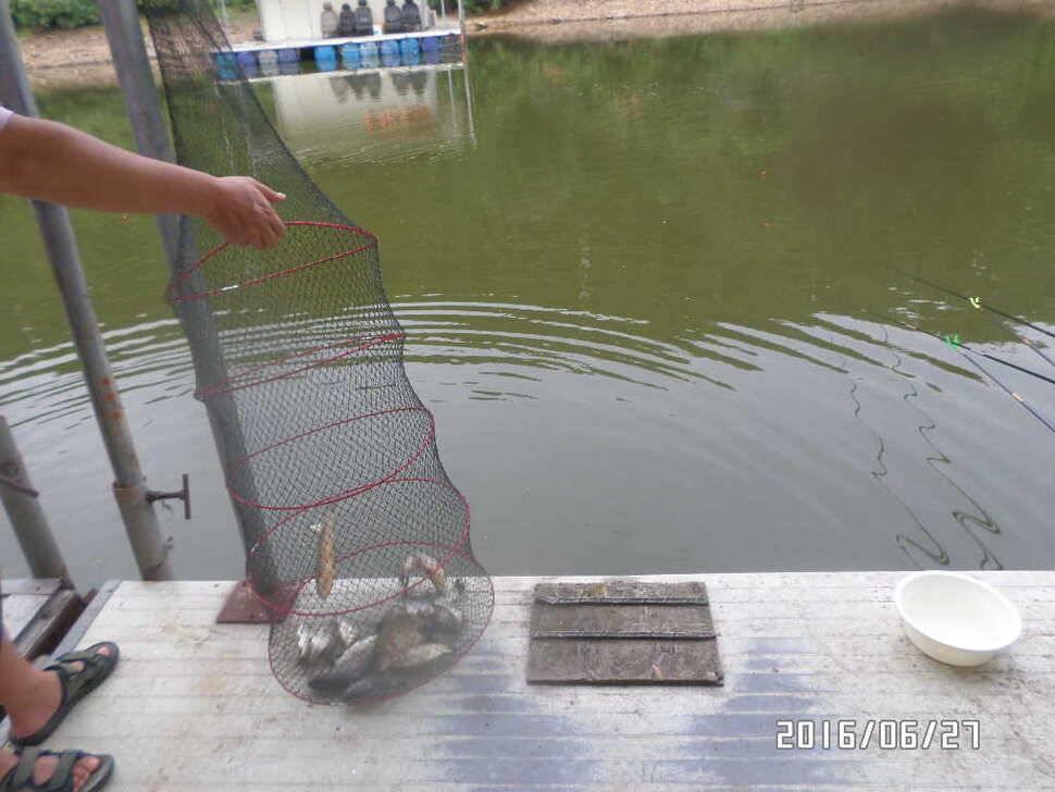 fish_pay_06360399.jpg