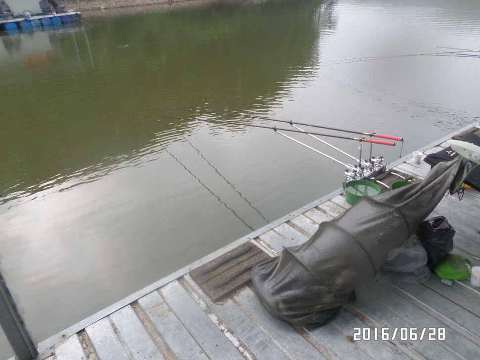 fish_pay_06363222.jpg