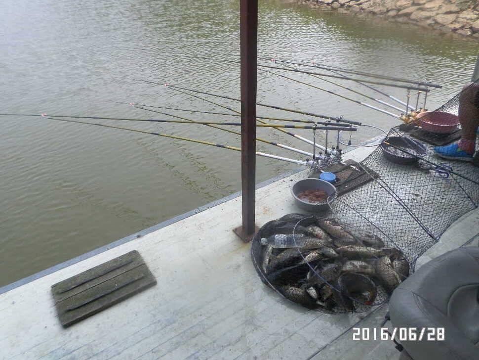 fish_pay_06364647.jpg