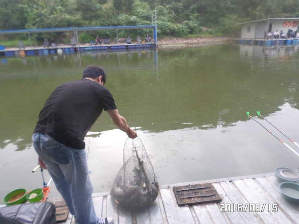 fish_pay_064425100.jpg