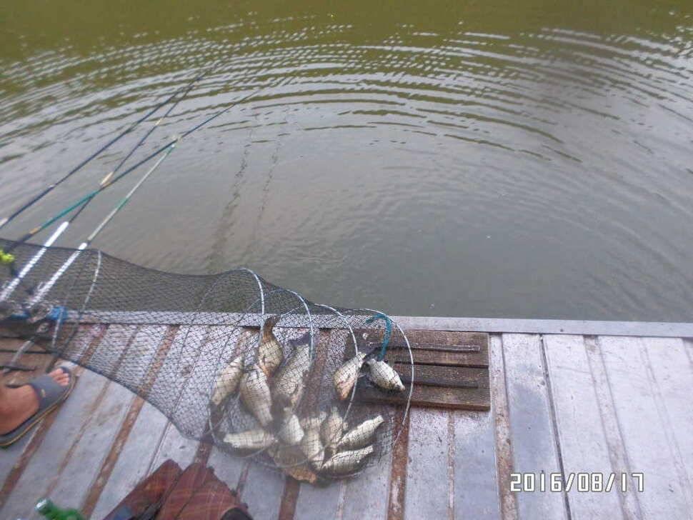 fish_pay_06453849.jpg