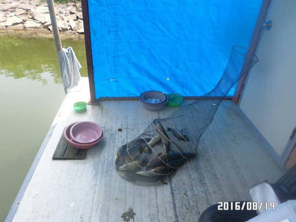 fish_pay_06455946.jpg