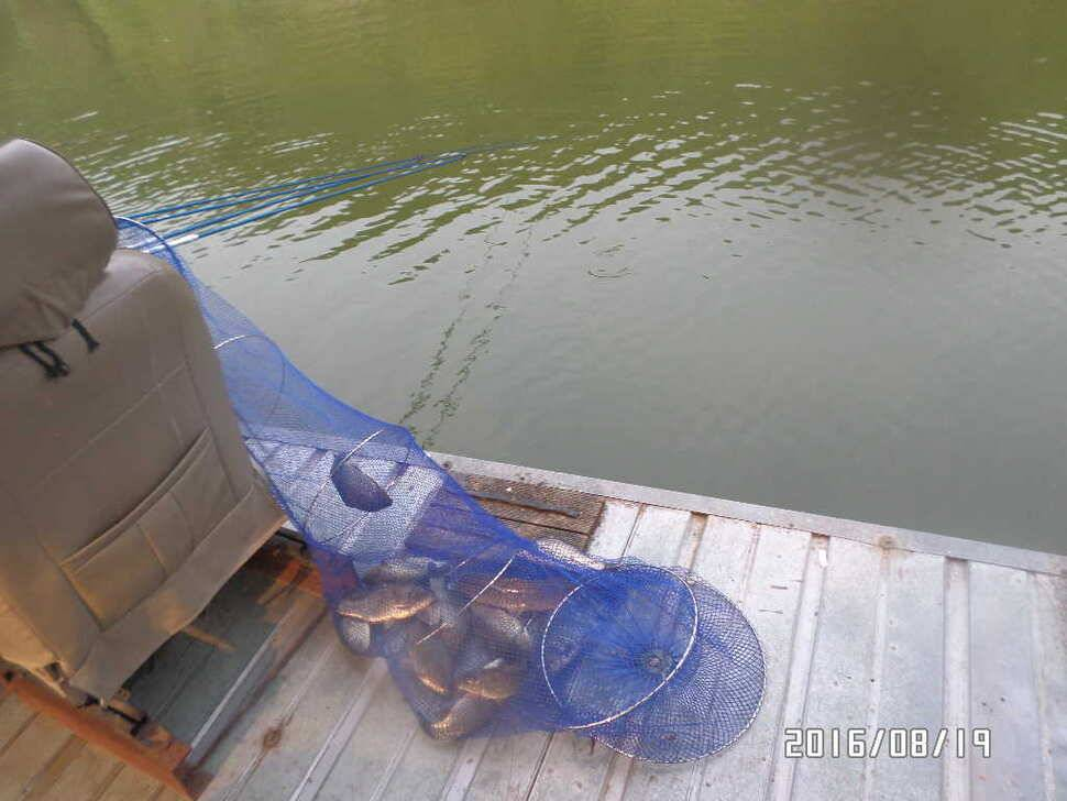 fish_pay_06460970.jpg