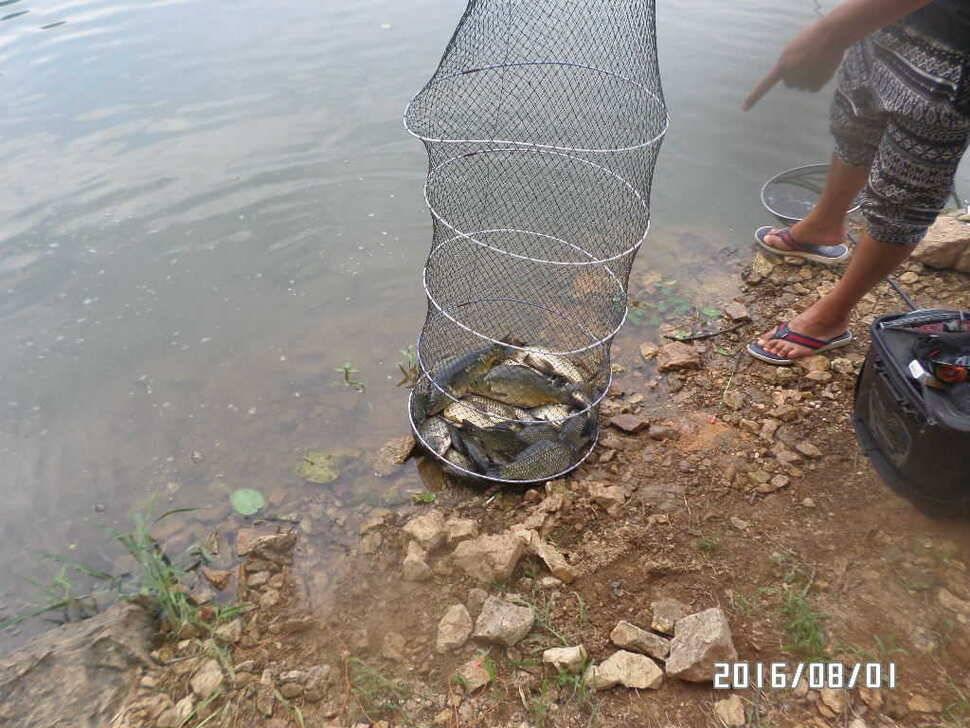 fish_pay_06513247.jpg