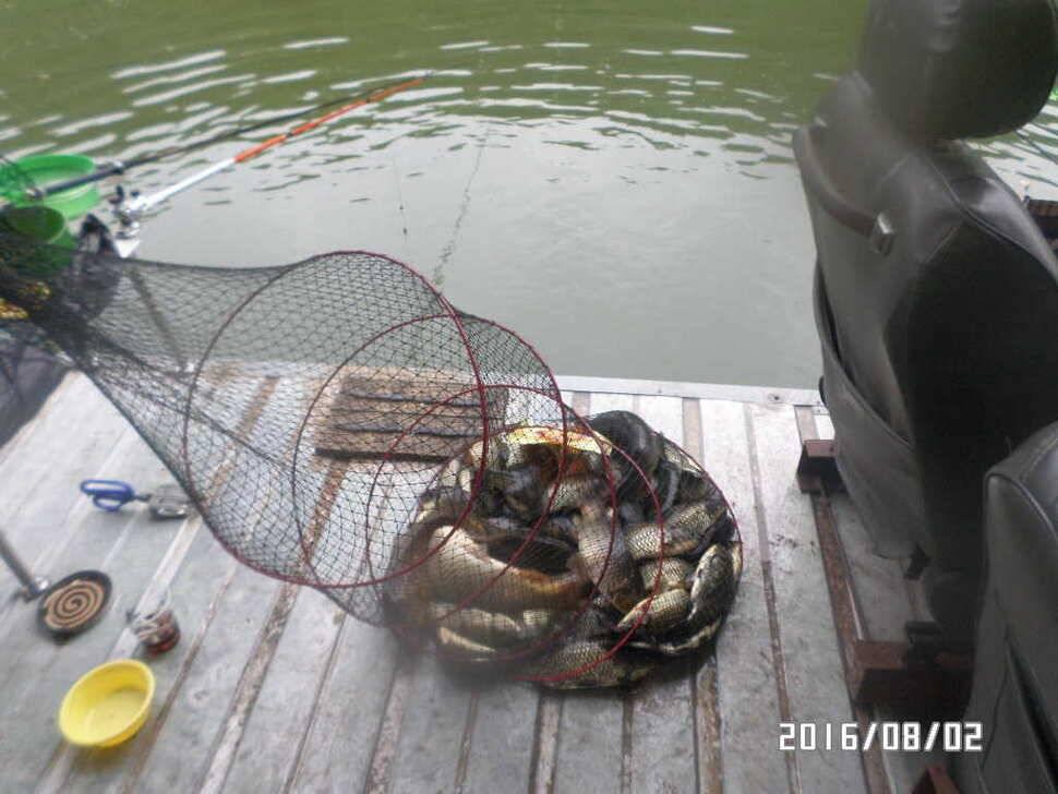 fish_pay_06514181.jpg