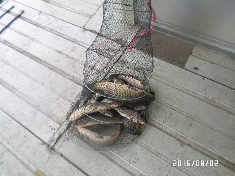 fish_pay_06531749.jpg