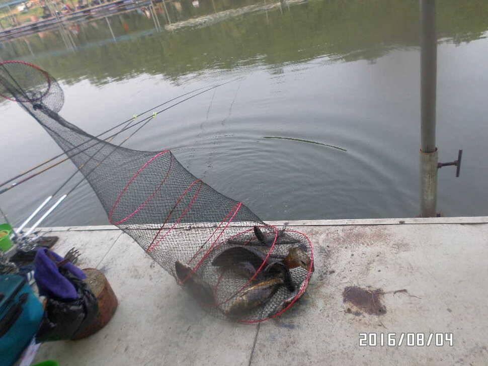 fish_pay_06534083.jpg