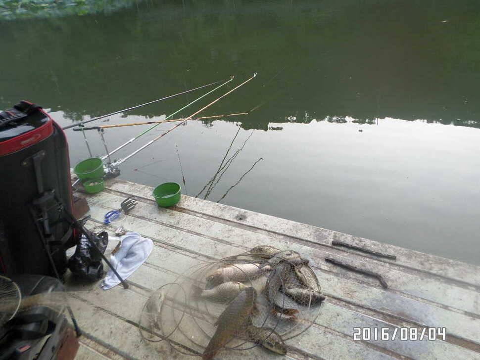 fish_pay_06534468.jpg