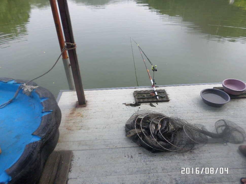 fish_pay_06535985.jpg