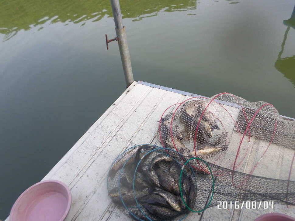 fish_pay_06540319.jpg