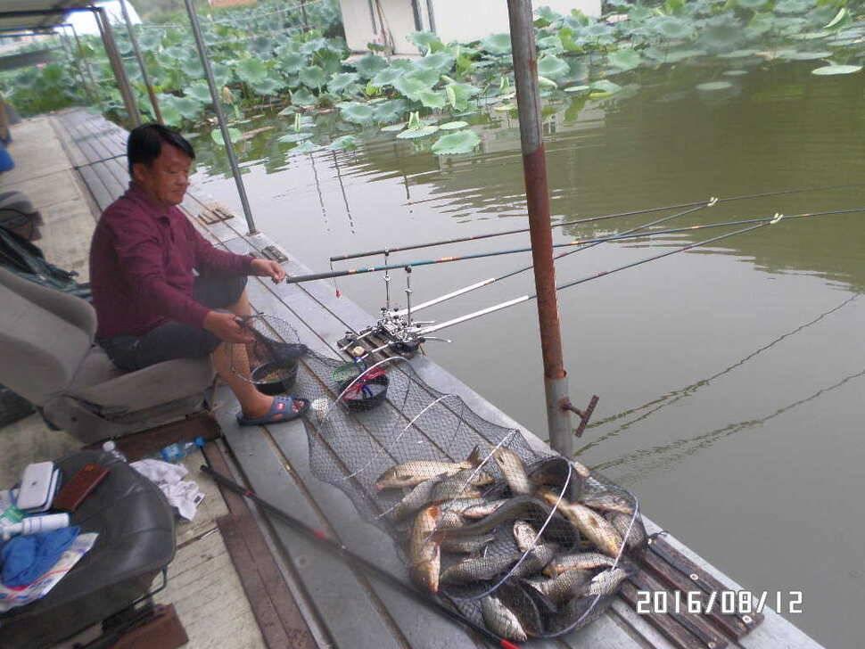fish_pay_07035616.jpg