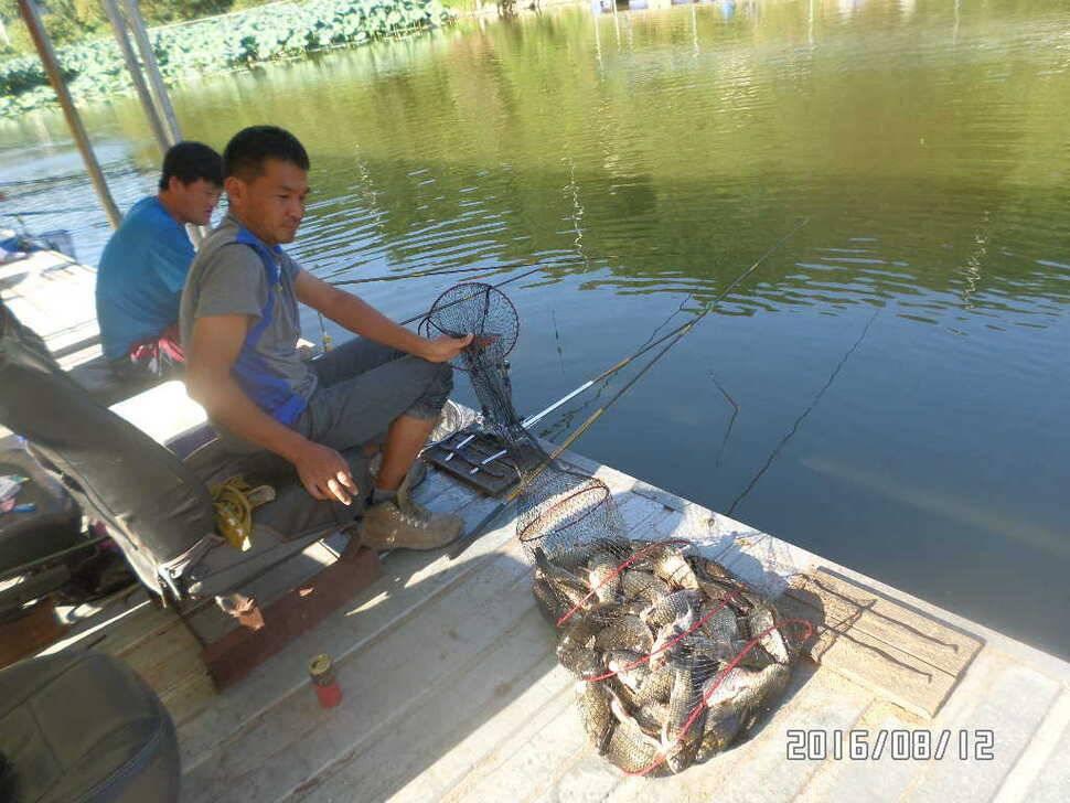 fish_pay_07040649.jpg