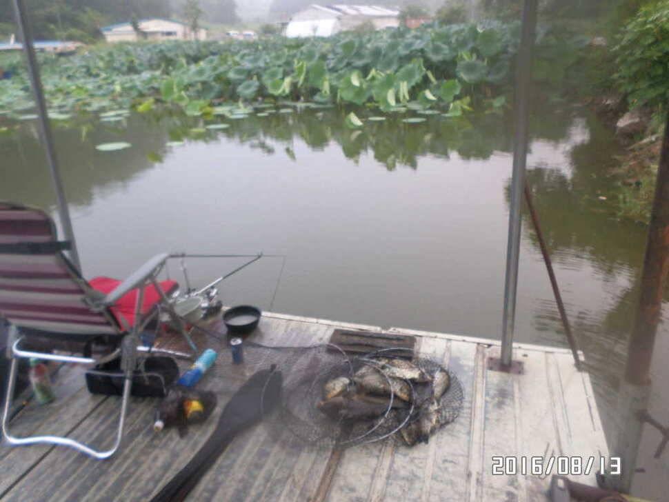 fish_pay_07041064.jpg