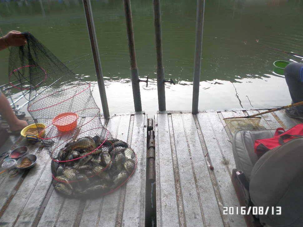 fish_pay_07045814.jpg