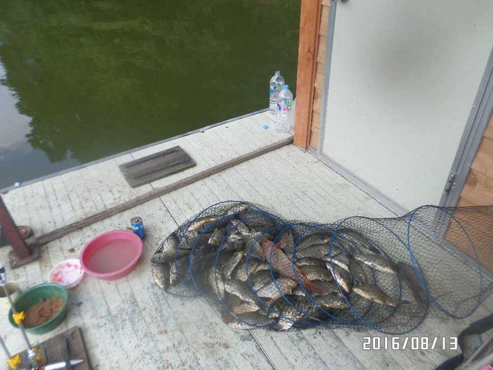 fish_pay_07051147.jpg