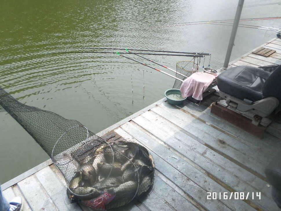 fish_pay_07060221.jpg