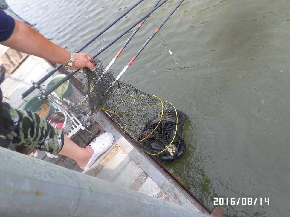 fish_pay_07060660.jpg
