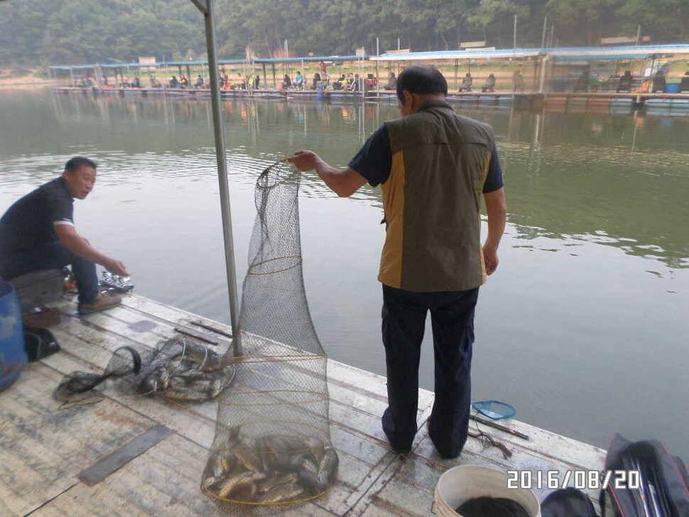 fish_pay_07105568.jpg