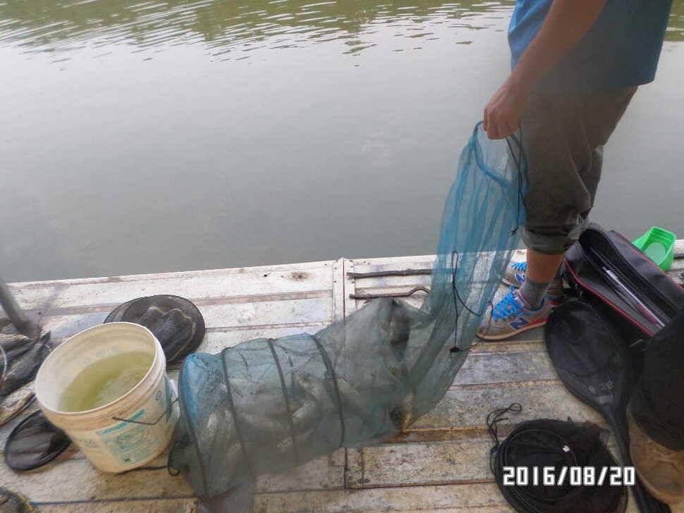fish_pay_07110063.jpg