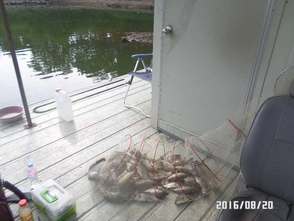 fish_pay_07111442.jpg
