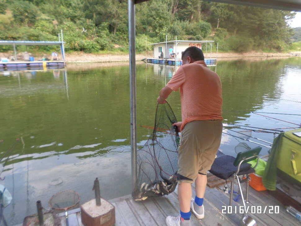 fish_pay_07120727.jpg