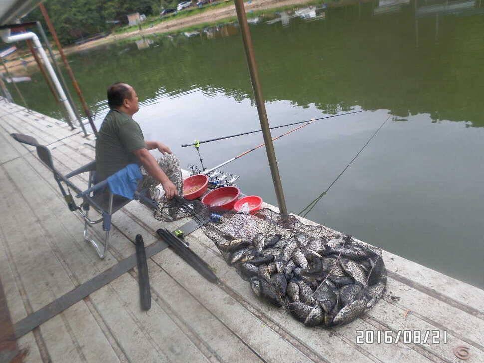 fish_pay_07121768.jpg