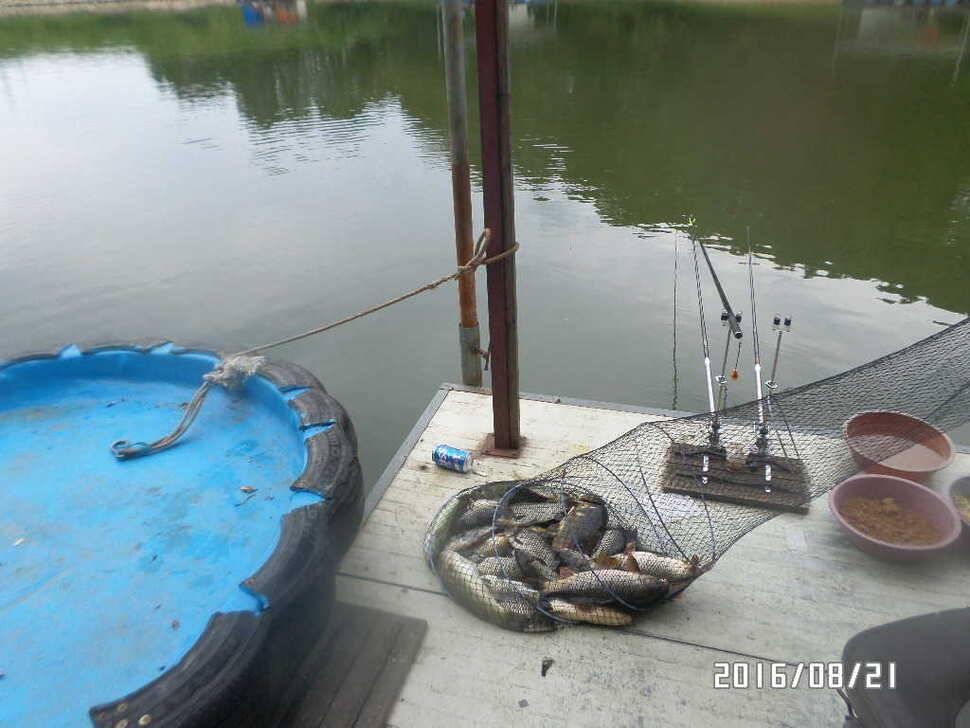 fish_pay_07123793.jpg