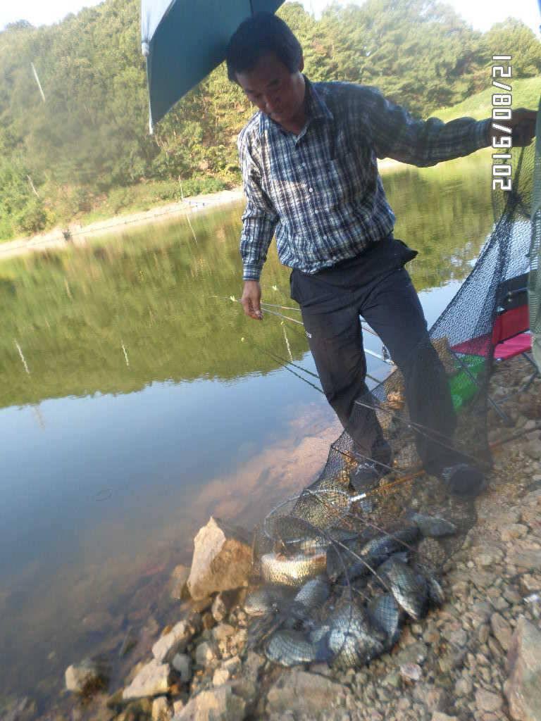 fish_pay_07130555.jpg