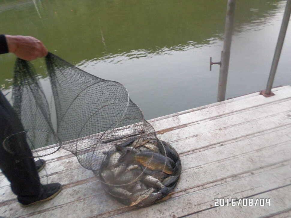fish_pay_07181136.jpg