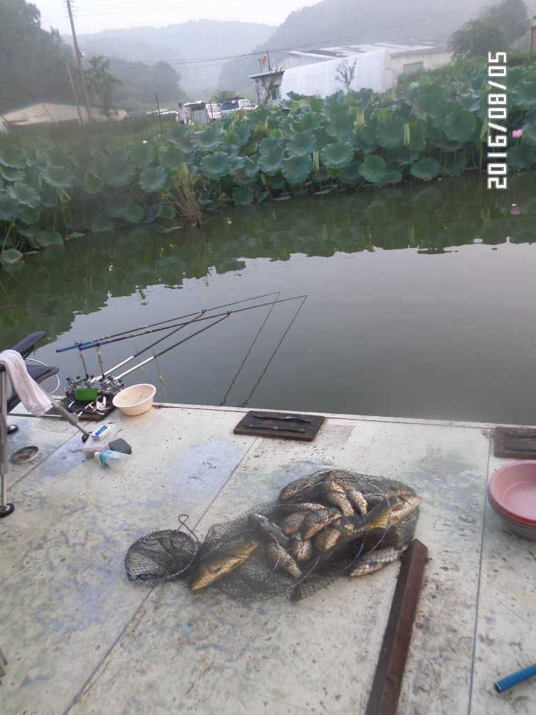 fish_pay_07181633.jpg