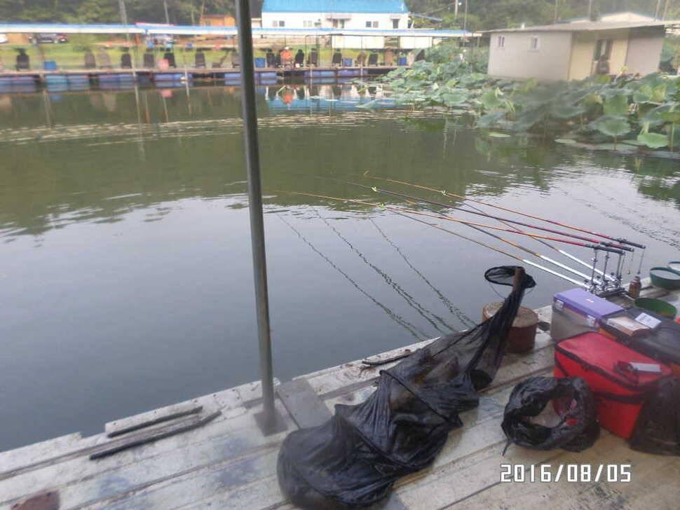 fish_pay_07182432.jpg