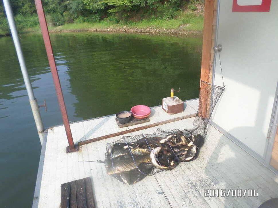 fish_pay_07193811.jpg