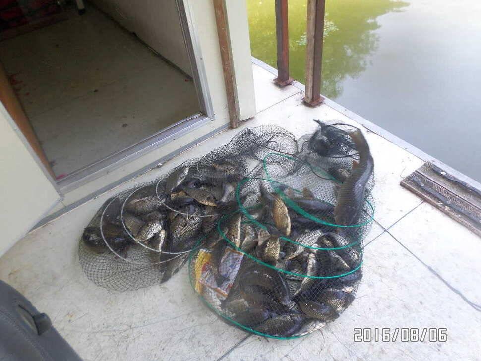 fish_pay_07194374.jpg