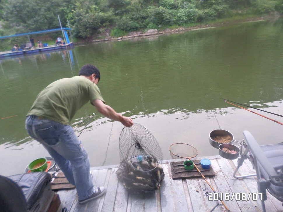 fish_pay_0720183.jpg