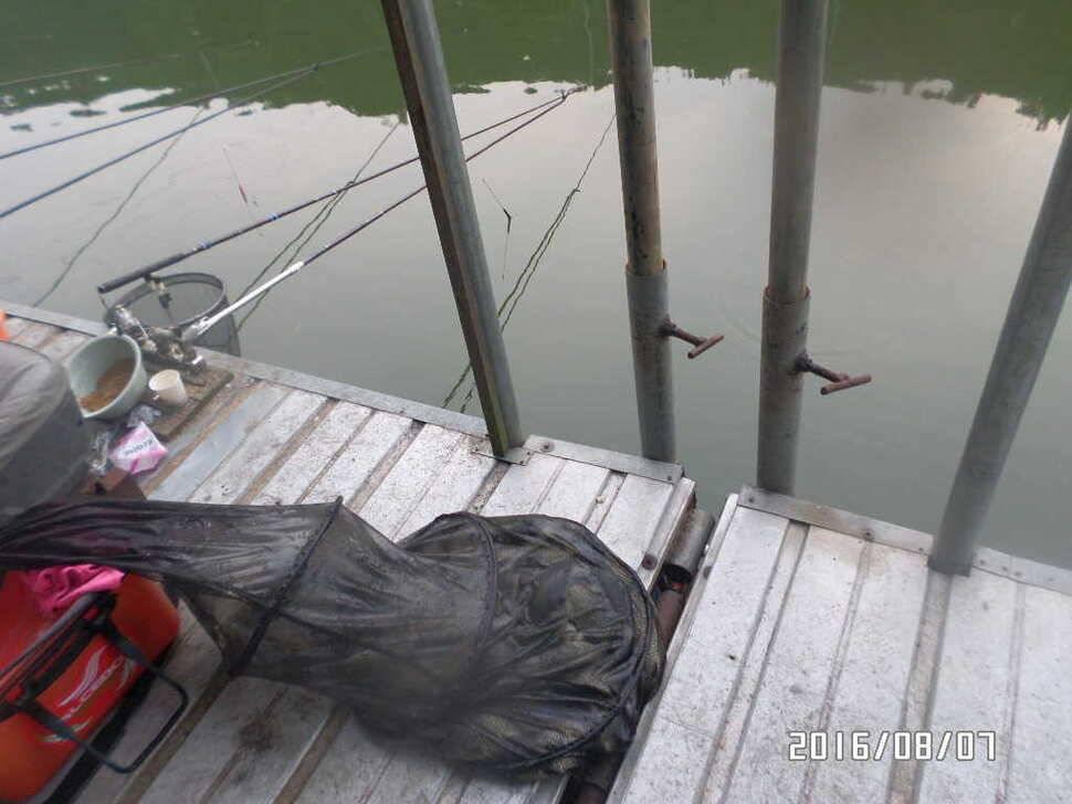fish_pay_07204364.jpg