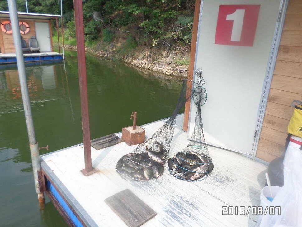 fish_pay_07210780.jpg
