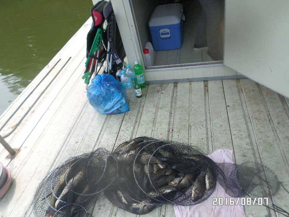 fish_pay_07211127.jpg