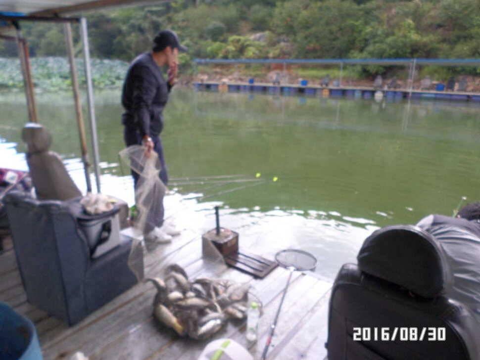 fish_pay_0724332.jpg