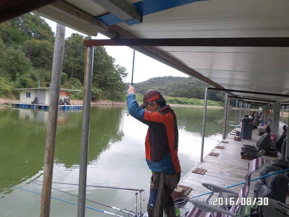 fish_pay_07245848.jpg