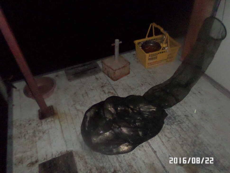 fish_pay_07250271.jpg