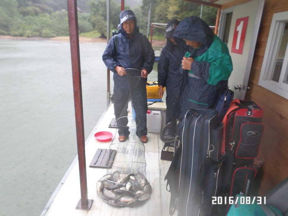 fish_pay_07252161.jpg