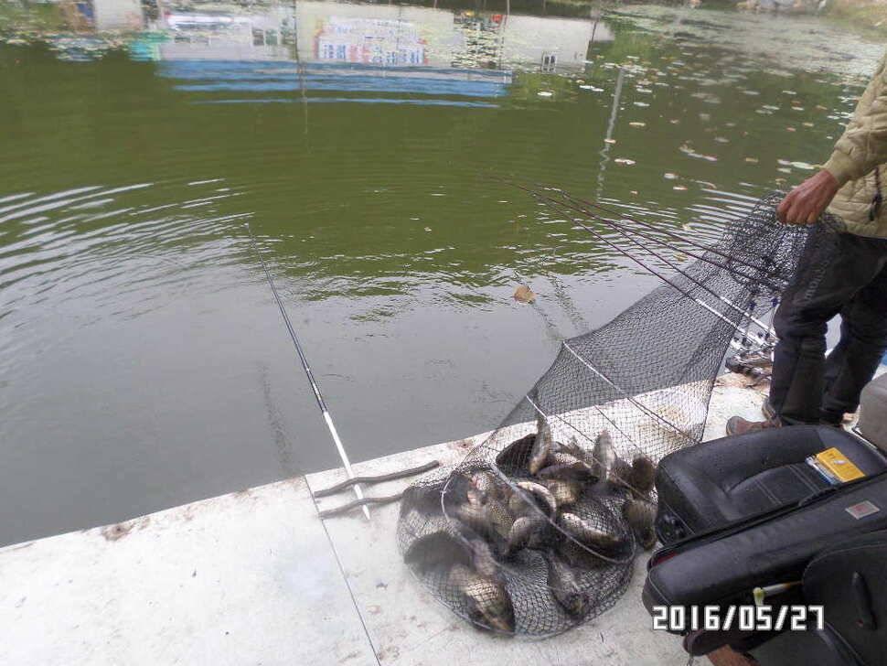 fish_pay_07352213.jpg