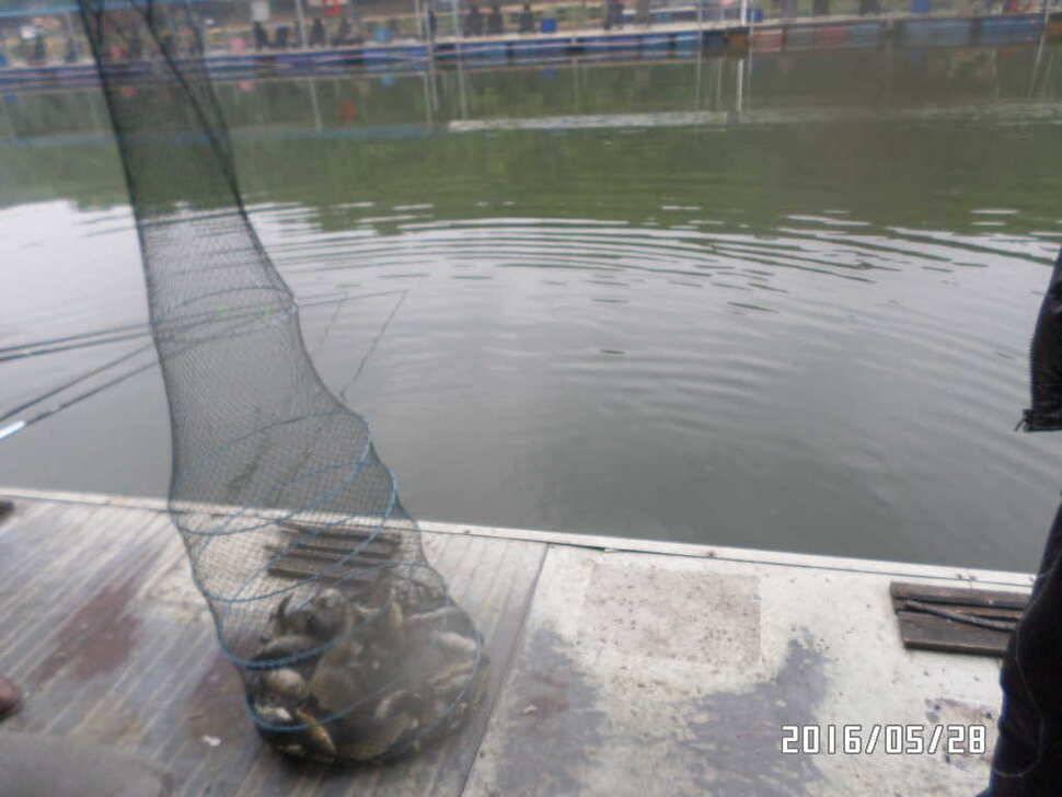 fish_pay_07360979.jpg