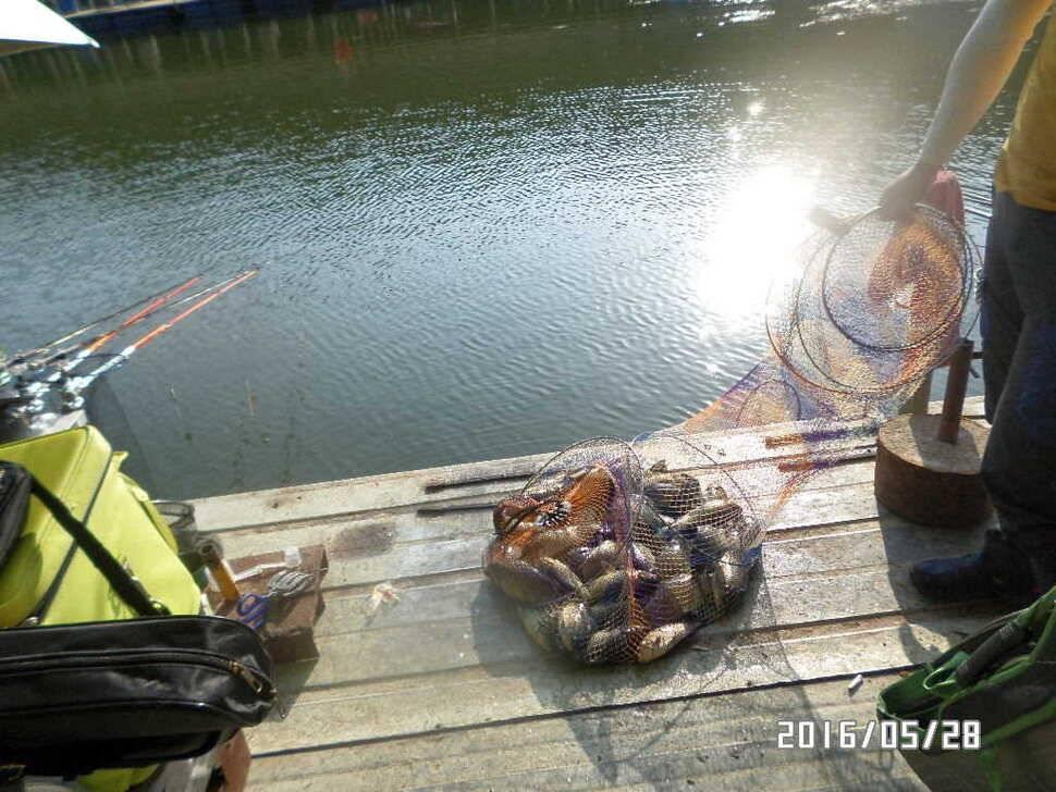 fish_pay_07371283.jpg
