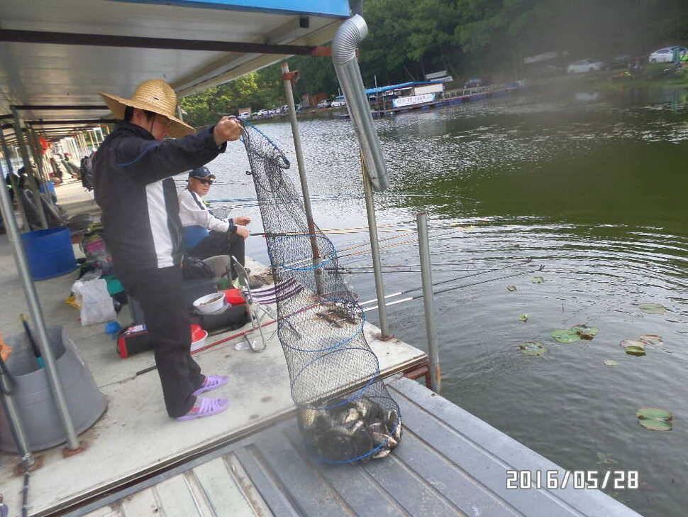 fish_pay_0737274.jpg