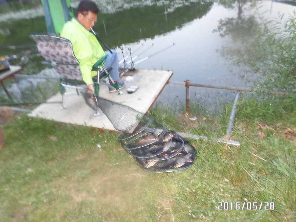 fish_pay_07374215.jpg