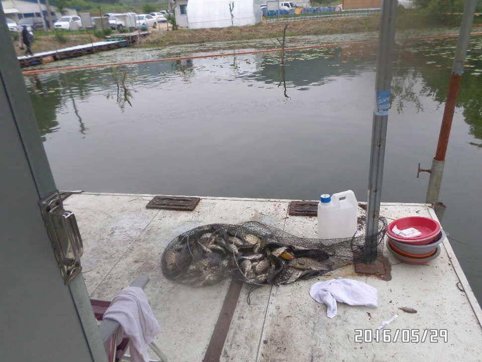fish_pay_07382266.jpg