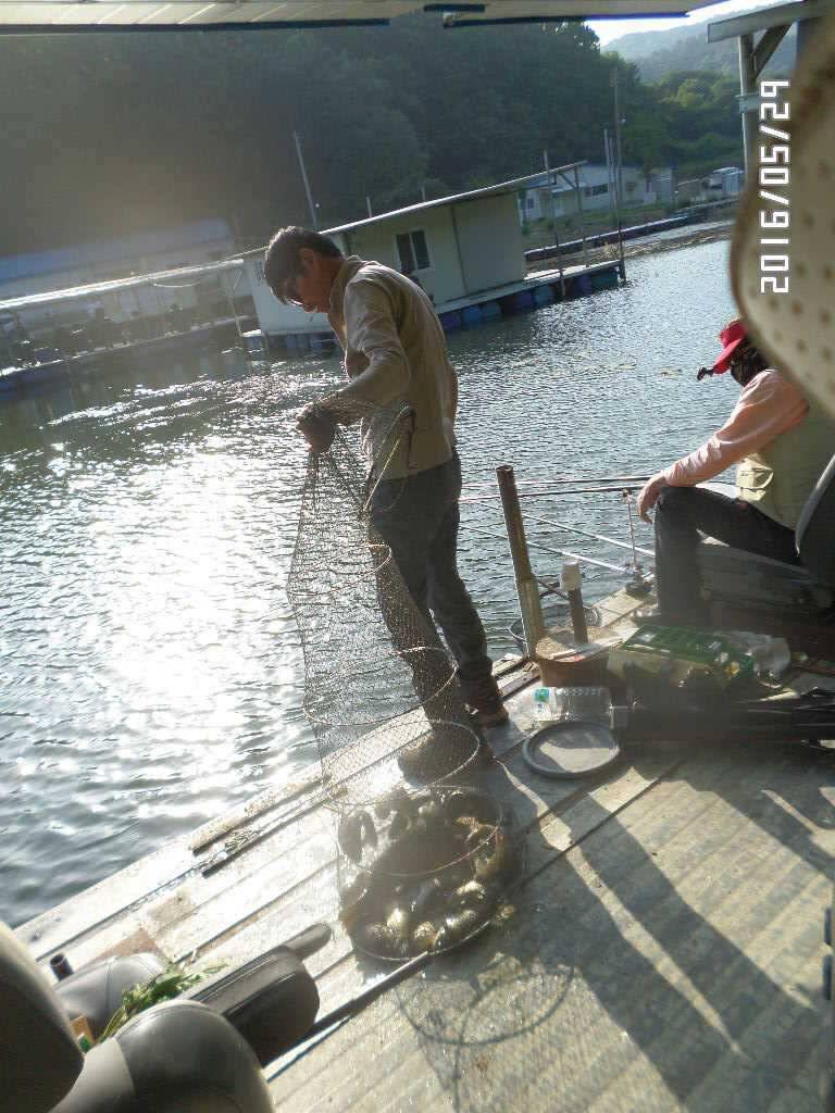 fish_pay_07384294.jpg